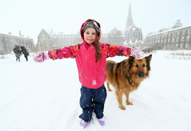 Five year old Jane Argue from Maynooth plays in the snow with her dog Daisey at St Mary's quadrangle at Maynooth University. Photo:Frank Mc Grath