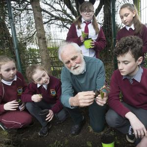 Nature lesson: Paddy Madden discusses plants with Emma Swords, Anna Callaly, Anna Price, Shannon Farrell and Ben O'Kelly. Photo: Tony Gavin