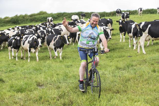 Double jobbing: John Heagney runs Cycle Holidays Ireland and is also a farmer