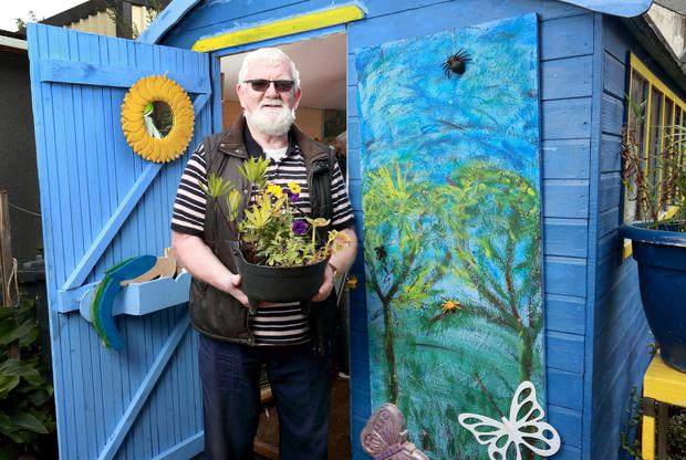 Flower power: Michael O'Donoghue at the men's shed project in Kilcock