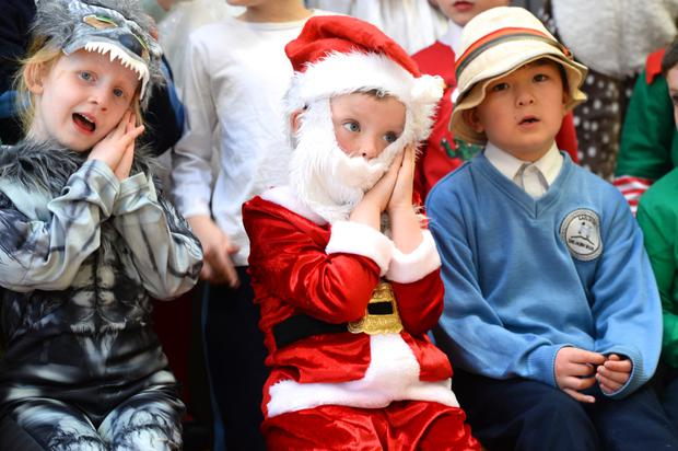Junior Infants at Gaelscoil Shliabh Rua in Kilternan are doing a version of The Three Little Pigs for their Christmas play. Photo: Justin Farrelly
