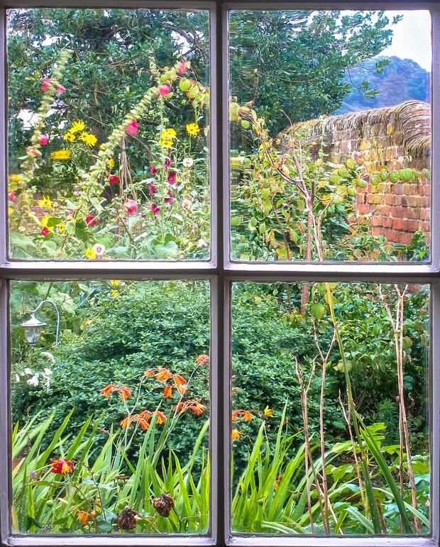 Country style... Pack easy-to-grow plants closely together without picking or choosing or mixing and matching and you can easily come up with an attractive cottage garden that looks after itself
