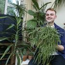 Eoin Murphy has more than 80 houseplants in his collection. Photo: Kyran O'Brien