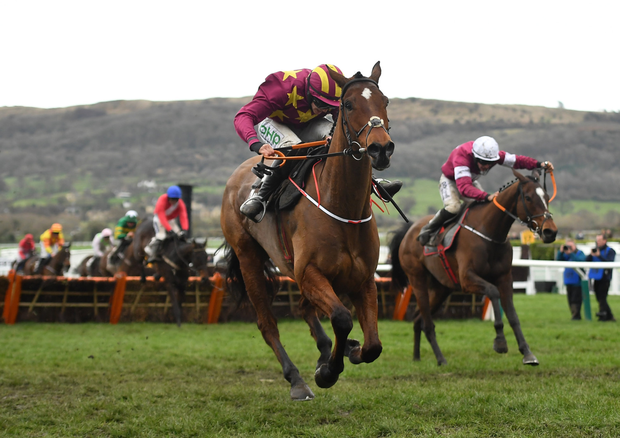 Jump zone: Rachael riding Minella Indo on their way to winning the Albert Bartlett Novices' Hurdle at the Cheltenham Racing Festival earlier this year. Photo by Seb Daly/Sportsfile