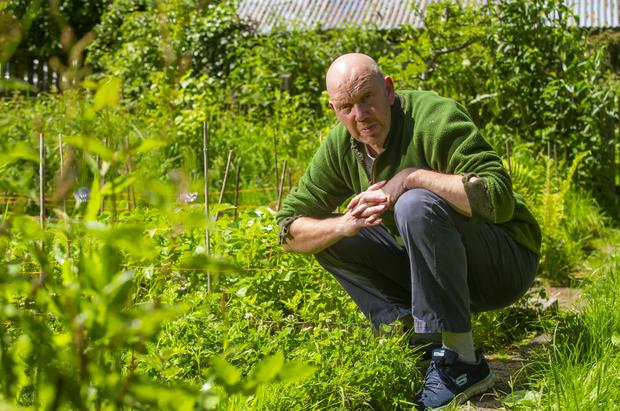 Green living: Andrew Malcolm, a professional forager, hasn't been on a plane since 2009. Photo: Patrick Browne