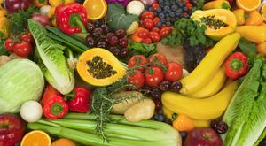 Gut feeling: There is so much conflicting advice about food and diet out there