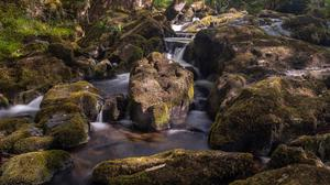 Glengarriff Nature Reserve is a wonderfully spiritual place