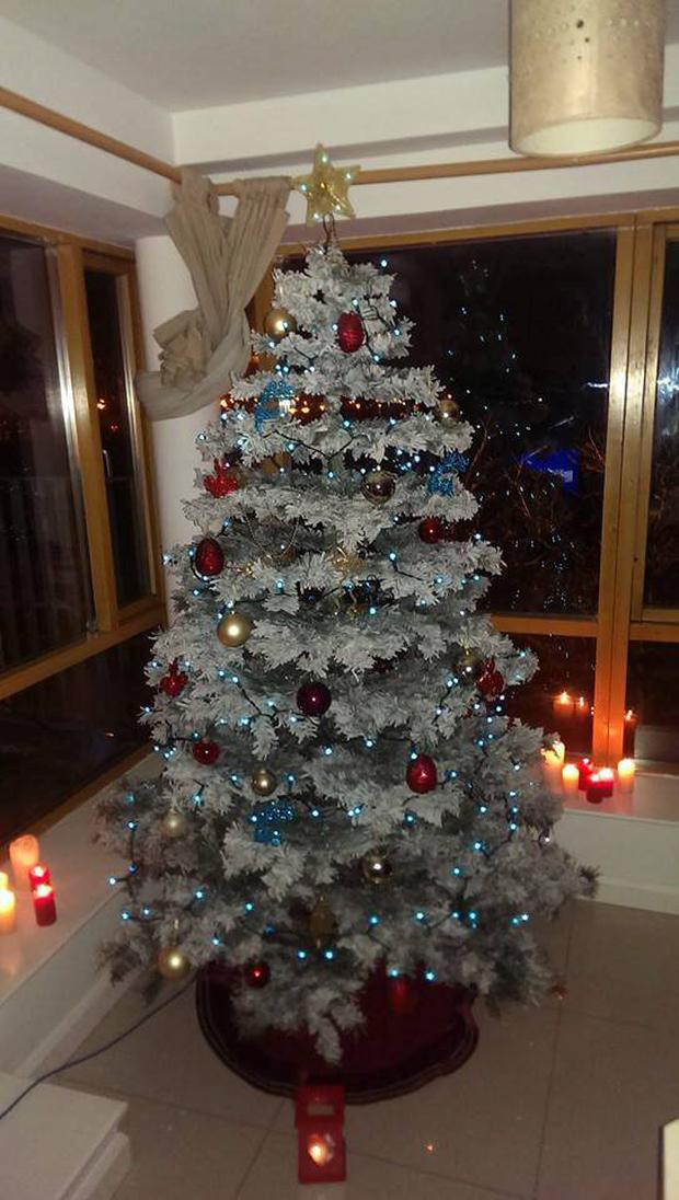 An example from Rate My Xmas Tree from Facebook.