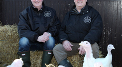 Get the bird: Paul and Fintan Hogan of Hogan's Farm in Cortown, Kells, Co Meath