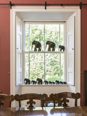 """Some of Chantal's extensive collection of 19th-Century ebony elephants. She feels an affinity with them. """"They're deep thinkers; they remember everything,"""" she says"""