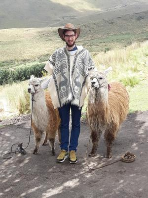 Is it an alpaca? A lama? Or a Kerry hipster?