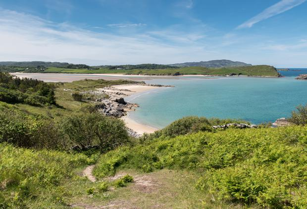 Picnicker's heaven at Sheephaven Bay, Ards Forest Park Photo: Fáilte Ireland