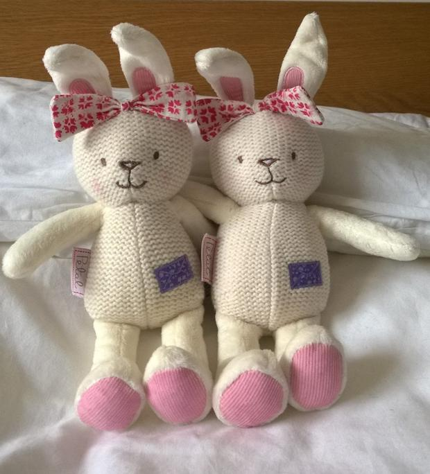 A bunny for each of the twin girls