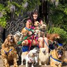 No Regrets: Linda Martin with her dogs.