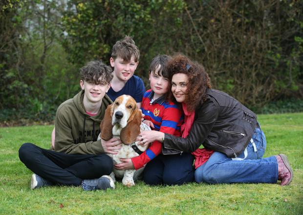 Healing process: Karen Donoghue and her sons (left to right) David (14) Thomas (12) and Brendan (8) with their basset hound Barney. Photo: Damien Eagers
