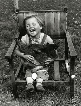 The yoke's on me: Three-year-old Paul Moorman laughs after his pet hen laid an egg in his lap while he was cuddling her. He ate the egg for breakfast the following morning. In October 1953, the export of Irish eggs to Britain resumed as egg rationing ended there.