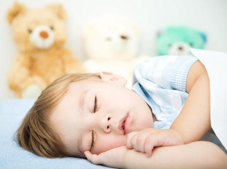 'In fairness to the 45th President of the United States of America, everyone seems to be a bear these days. This has been the case ever since Emilia read a baby book about the little bear in the forest' (stock photo)