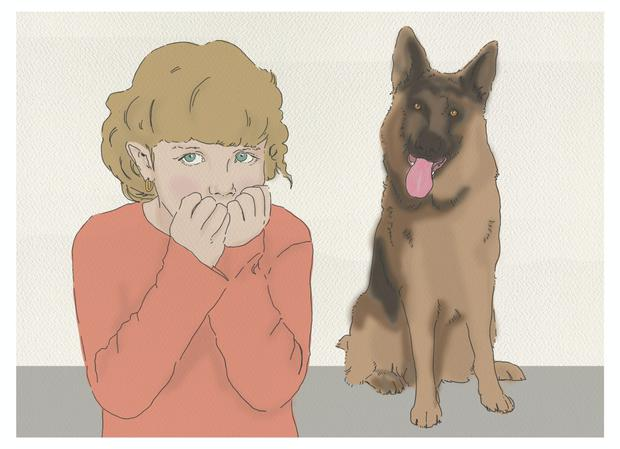 Dear David: 'My daughter has a dog phobia and counselling