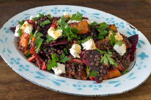 Puy Lentil Salad with Beetroot, butternut squash, parsley and goat's cheese. Photo: Tony Gavin.