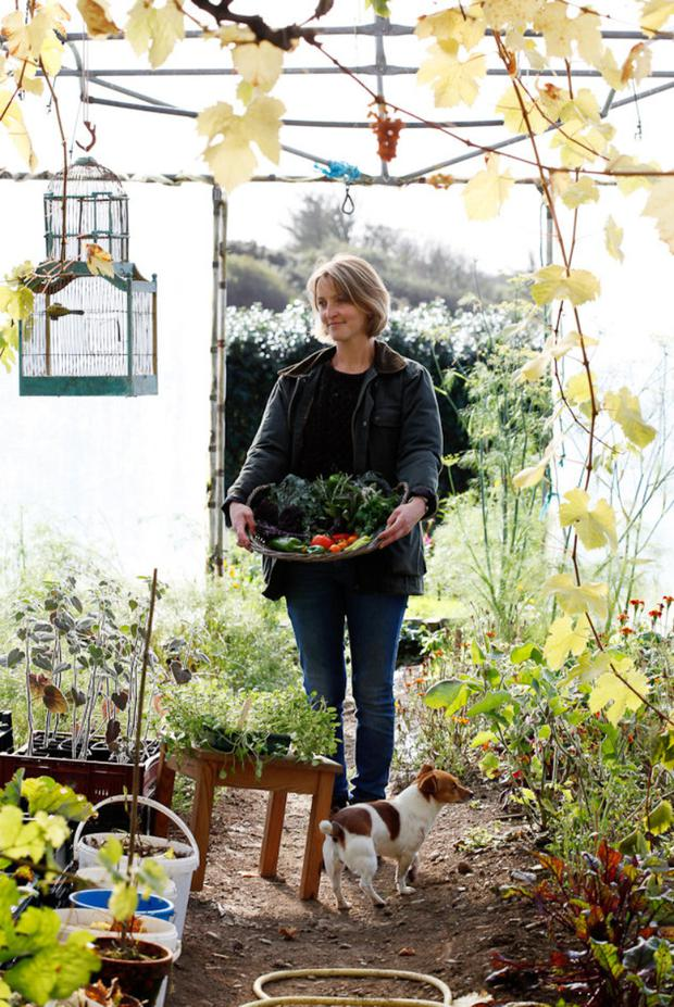 Digging in: Clovisse Ferguson in her salad and greens tunnels on the farm
