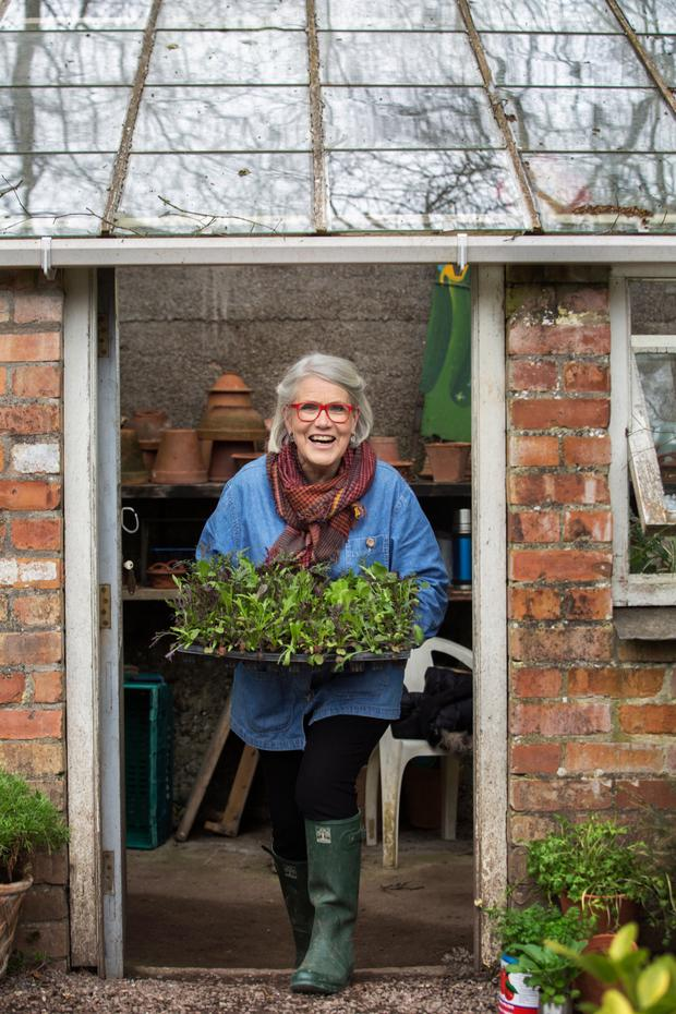 Darina Allen in her potting shed at the Ballymaloe. Photo: Clare Keogh