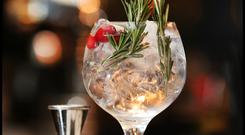 Festive Gin and Tonic