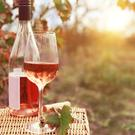 Rose wines are perfect for summer