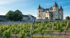 Idyllic: Château de Saumur overlooks the beautiful Loire Valley