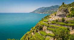 Vines with a view: Vineyards in Campania produce crisp, zesty whites