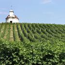A catholic chapel sits atop a hill of grapevines in eastern Hungary's famed Tokaj region