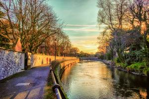 The River Dodder