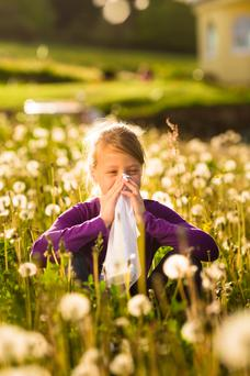 There are currently an estimated one million hay-fever sufferers in Ireland and 85pc of them self-medicate.