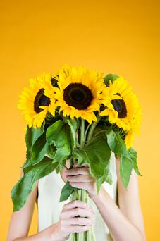 Two guests brought sunflowers. Getty Images