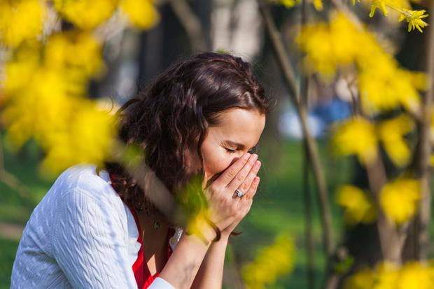 The widespread consumption of hay fever pills could be contributing to the increase of antibiotic resistance. Stock Image