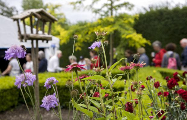 The Carlow Garden Trail boasts 16 different gardening attractions