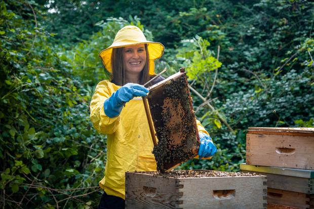 DCU PhD student Saorla Kavanagh, who led the research that found Irish heather honey has health benefits comparable with Manuka honey