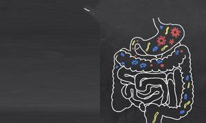 Take steps to achieve a healthy gut