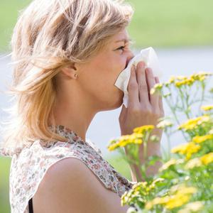 Allergies occur when our immune system overreacts to minor threats