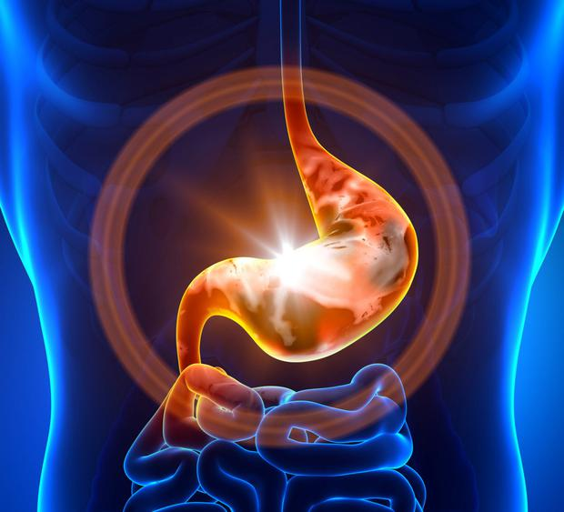 New research is focusing on the internal environment and the microbiome that live in our gut
