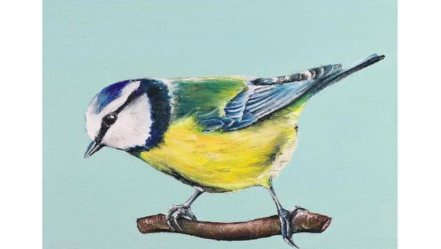 Print, €30 - Bird watching made easy with this Blue tit print; dollybirdsart.com