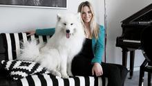 """Interior designer Suzie McAdam at home with her Samoyed husky, Mischko. """"We just have one piece of furniture that he's allowed on,"""" says Suzie."""