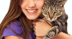 A new study has shown that cats and dogs are the top confidantes of young children, because they believe that pets will be the least judgemental about their secrets