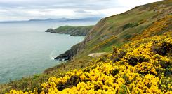 1. View of Howth