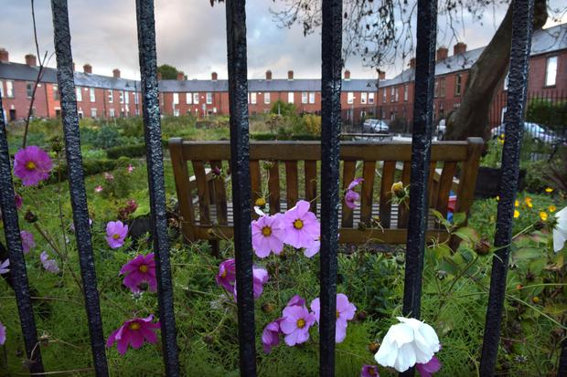 Leafy and largely middle-class residential Glasnevin. Photo: Bryan Meade.
