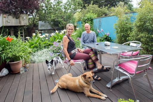 Peter and Aideen Jones in their stunning back garden, created by Peter. Hoover, the small dog, has been with the family for years, but rescue dog Ben is a recent addition. Photo: Tony Gavin.
