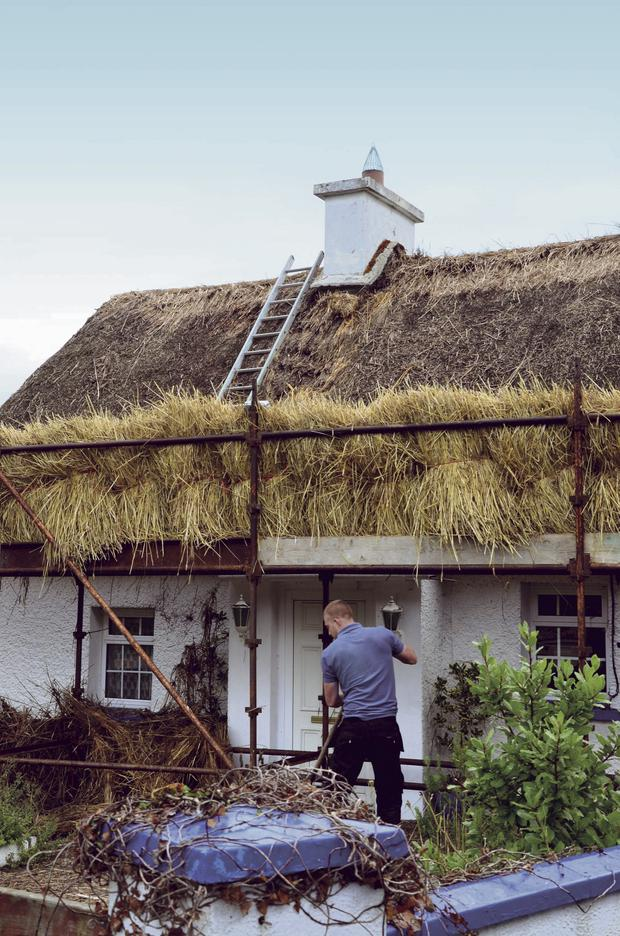 Emma Byrne's cottage being rethatched by master thatcher Peter Childs. Photo: Bryan Meade