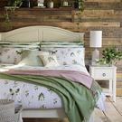 A summery and feminine bed-linen range from Marks & Spencer