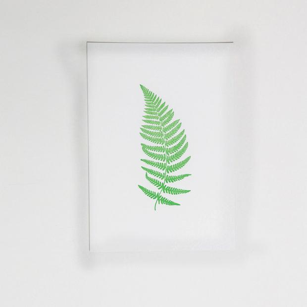 Set of six fern prints, €25, irishdesignshop.com