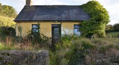 Back in Time: The ivy-covered exterior of Gleeson's Cottage;
