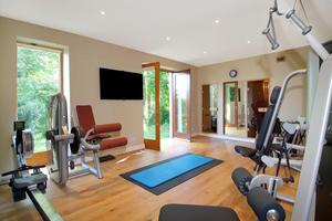 The gym with flatscreen at Fassaroe House